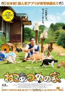 映画「ねこあつめの家」出演の猫たちを紹介!
